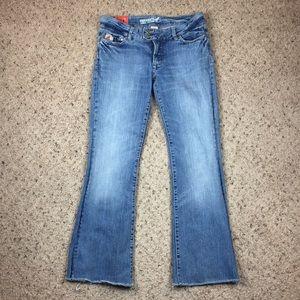 Parasuco Jeans - Parasuco Denim Legend Bootcut Jeans